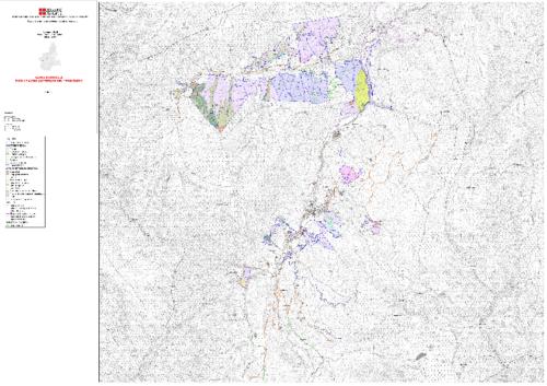 Carta forestale e delle altre coperture del territorio_PRALI
