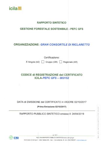 2019-RAPPORTO PUBBLICO SINTETICO FIRMATO