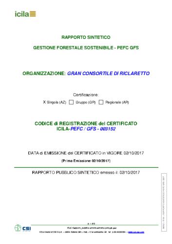 Rapporto_pubblico sintetico_2017 (1)